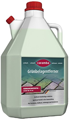 Grünbelagentferner in 5 l Gewinde von Caramba