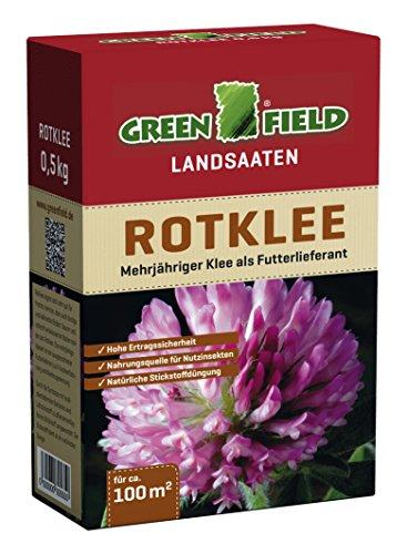 Greenfield Rotklee