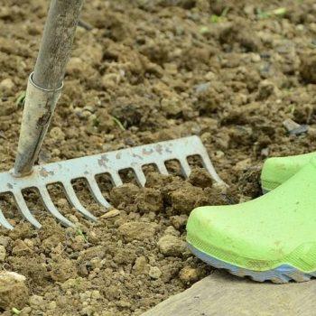Garten fräsen in 3 Schritten (Anleitung für Boden & Rasen)