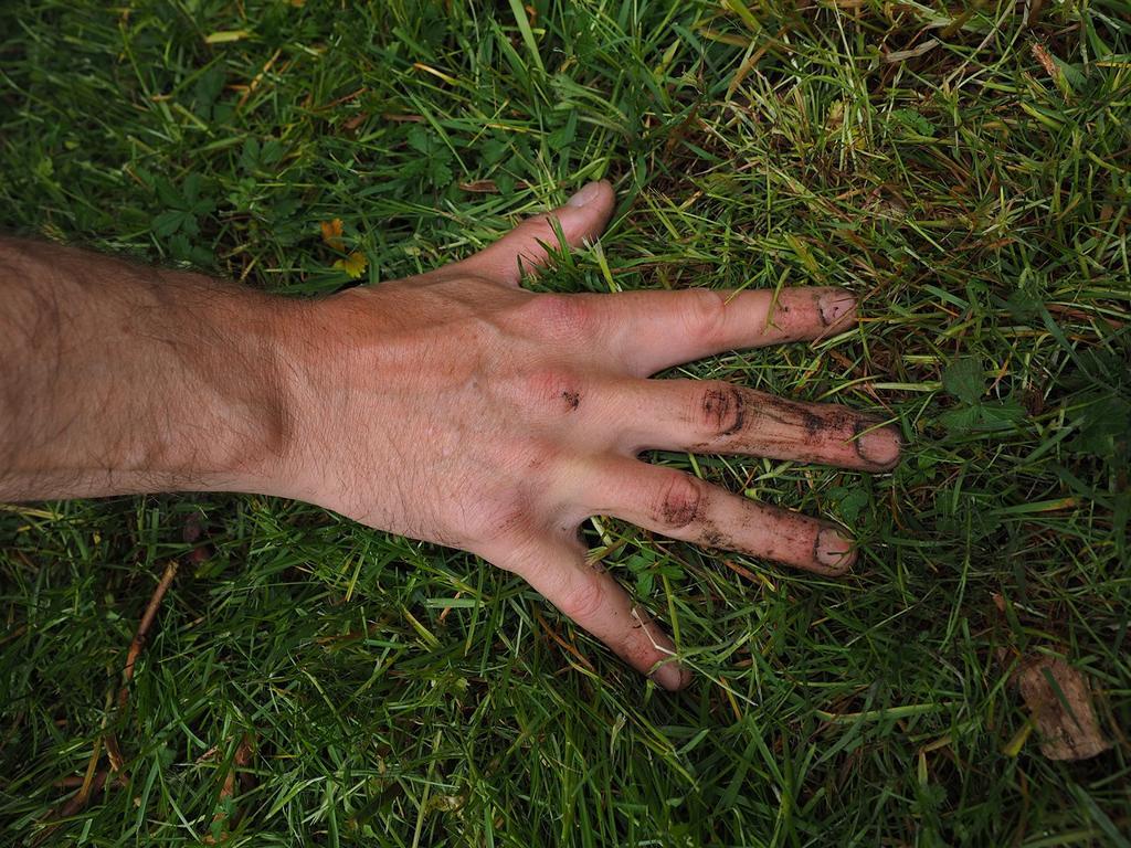 Rasen mit Rasenmäher & Fräse bearbeiten