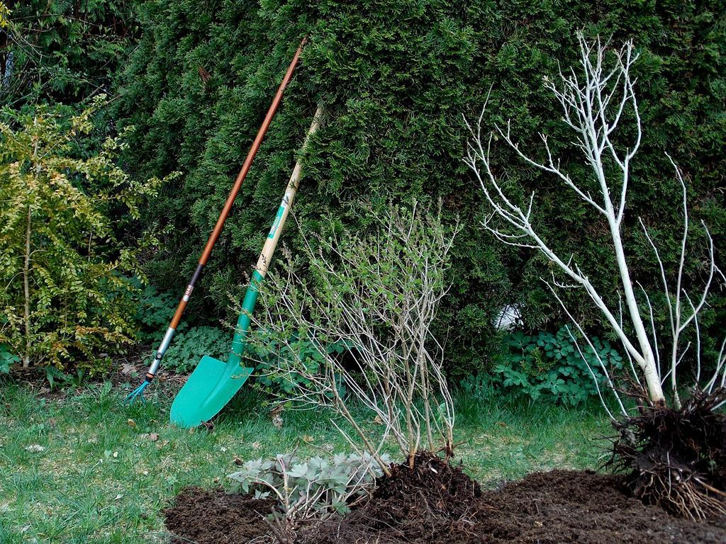 Motorhacke Gartenfrase Bei Steinigem Boden Sind Steine Ein Problem