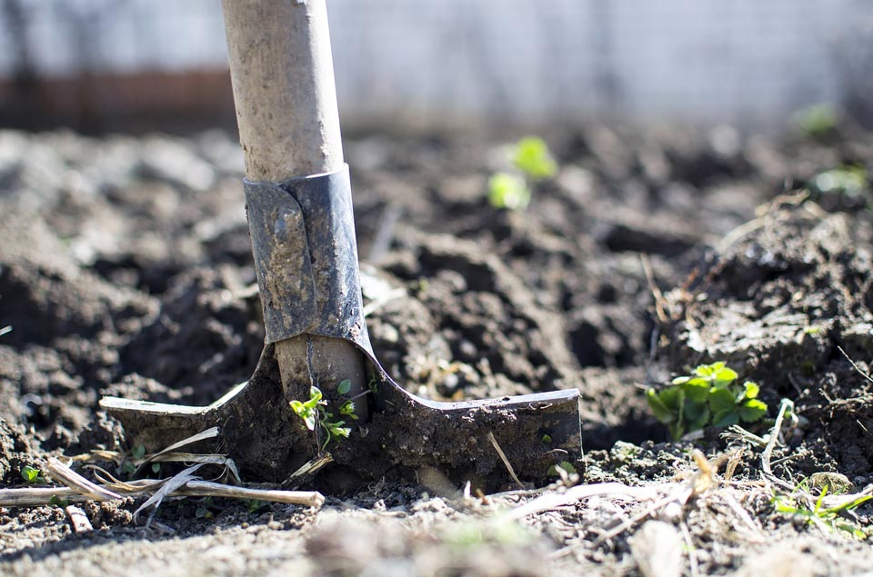 Gartenboden mit Hacke lockern