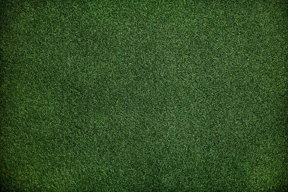 Planierter Boden mit Rasen