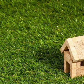 Rasen fräsen und neu anlegen (3 Schritte Anleitung)