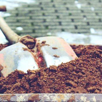 Gartenfräse mieten oder leihen? (Bodenfräse / Motorhacke / Ackerfräse)