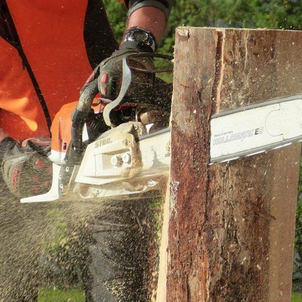 Motorsäge in Holz
