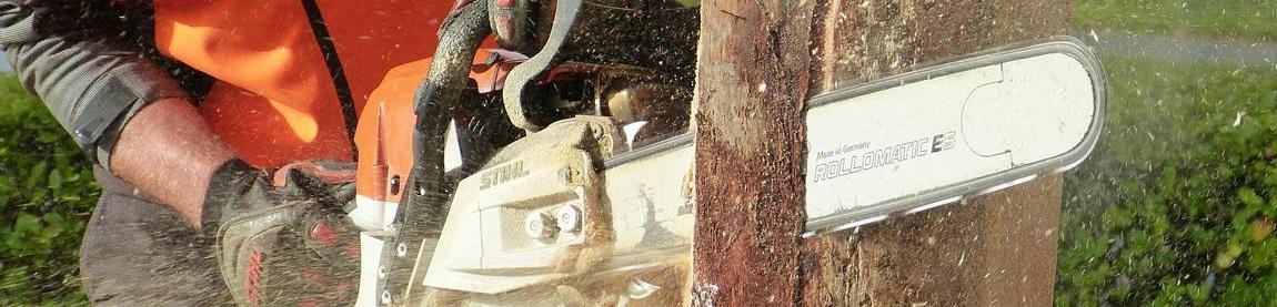 Mit scharfer Kettensäge Holz zersägen