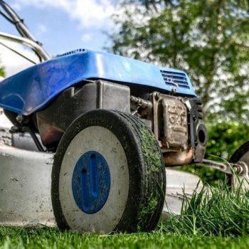Rasenmäher mit Vertikutierer in der Kombination? (Top Tipp)