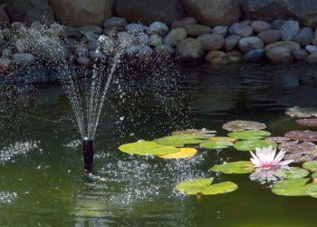 Springbrunnenpumpe Vergleich | Wasserspielpumpe mit Solar & LED