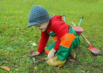 Kinderhacke Vergleich (Top 5) | Beste Gartenhacke für Kinder?