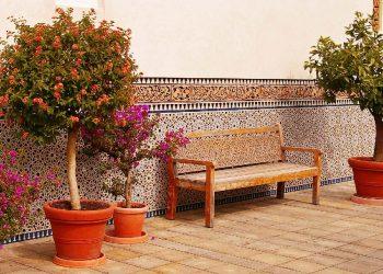 Pflanzenroller für den Außenbereich | Blumenroller Vergleich