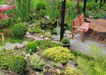 Pflanzenroller aus Holz (Top 5) | Der beste Blumenroller?