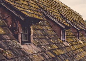 Moosentferner für das Dach (Top 5) | Dachziegel Moosvernichter