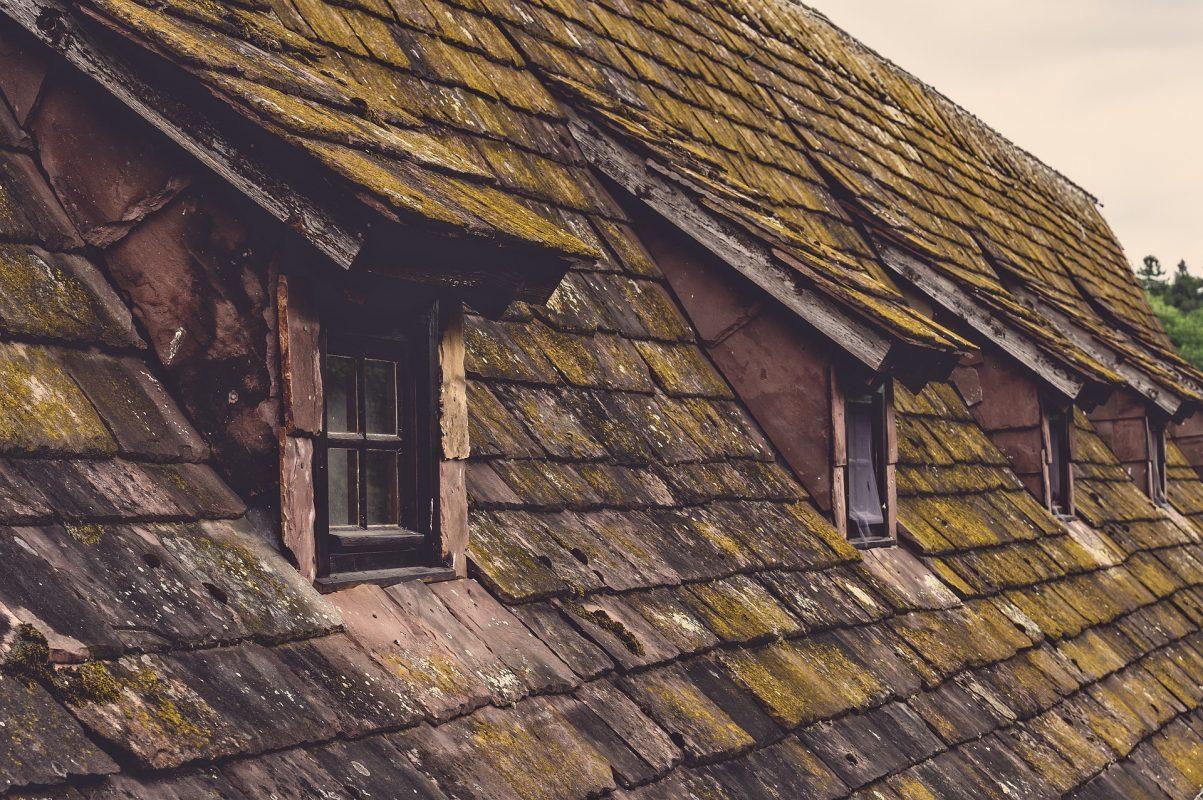 Gut bekannt Moosentferner für das Dach (Top 5) | Dachziegel Moosvernichter FL02