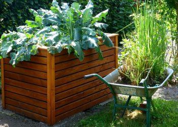 Rasenschnitt auf Beet ausbringen? Tipps für Hochbeet & Beete