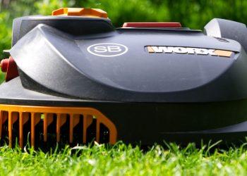 Rasenpflege Anleitung | Rasen richtig pflegen Tipps & Tricks