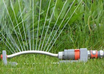 Rasen wie lange & wie oft sprengen? Tipps zum Gießen & Bewässern
