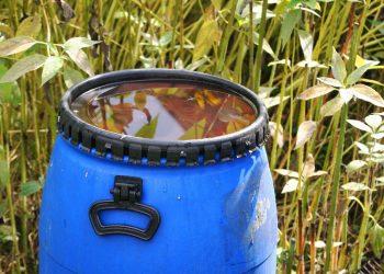 Gartentonne Vergleich (Top 5) | Laubtonne & Gartenabfalltonne
