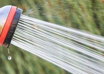 Rasen sprengen ist verboten?! Hierauf beim Bewässern achten!