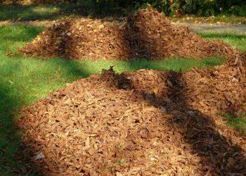Laubsack Vergleich (Top 5) | Kompostsack & Grünschnittsack