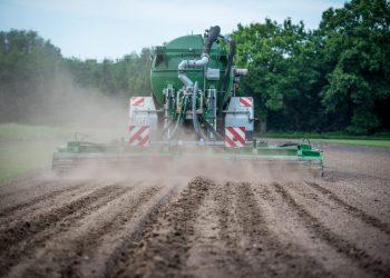 Kalkstickstoff für Rasen (Top 5) | Stickstoff als Dünger