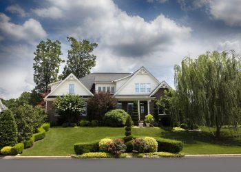 Rasenkalk Vergleich | Gartenkalk, Kalkdünger, Kalk für Rasen