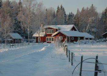 Winterbesen Vergleich | Besen für Schnee & Eis / Eisbesen