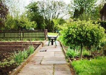 Garten neu gestalten & anlegen lassen | Kosten für Gartenplanung
