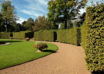 Garten für Neubau anlegen (Anleitung) | Ideen & Kosten
