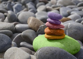 Garten mit Steinen gestalten (Anleitung) | Kies neu anlegen