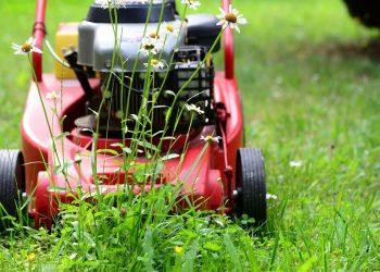 Grasmäher Vergleich (Top 3) | Bester Grasrasenmäher für Rasen