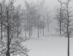 Bäume Schnee Eis Winter