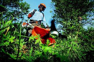 Garten Gartenpflege Gartenarbeit Rasenpflege Hobbygärtner