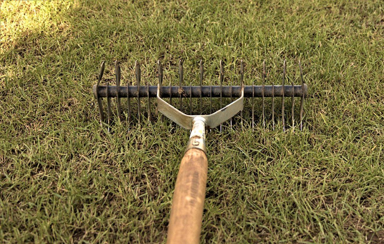 Gartenarbeit Rasen Rasenpflege Vertikutieren Handvertikutierer