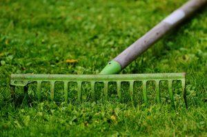 Rasen Gras Rechen Gartengeräte Gartenarbeit