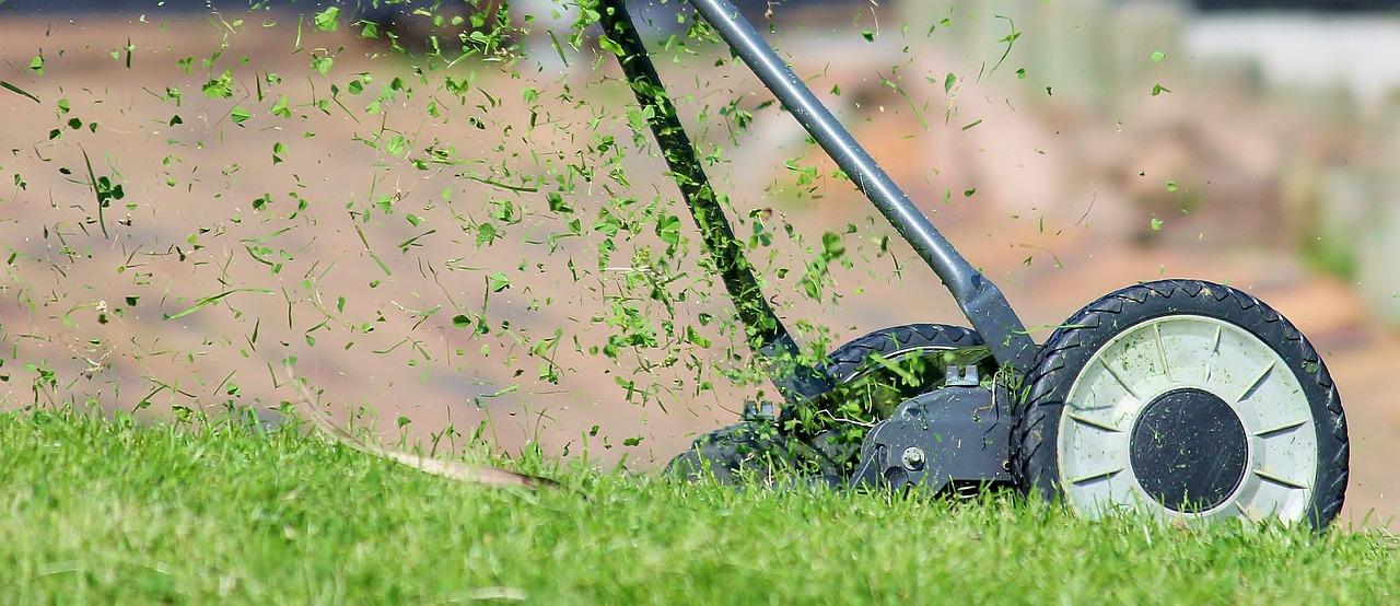 Rasen Rasenmäher Gartenarbeit Wiese Garten